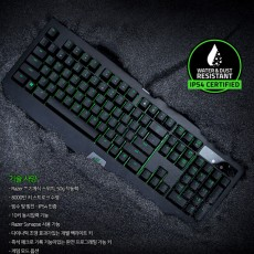 Razer Blackwidow Ultimate v2 녹축 한글버전